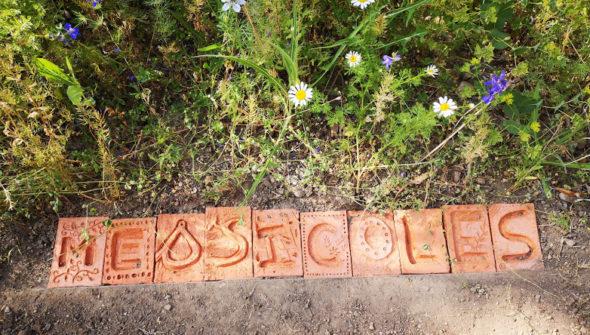 pavés de terre en bordure de plate bande